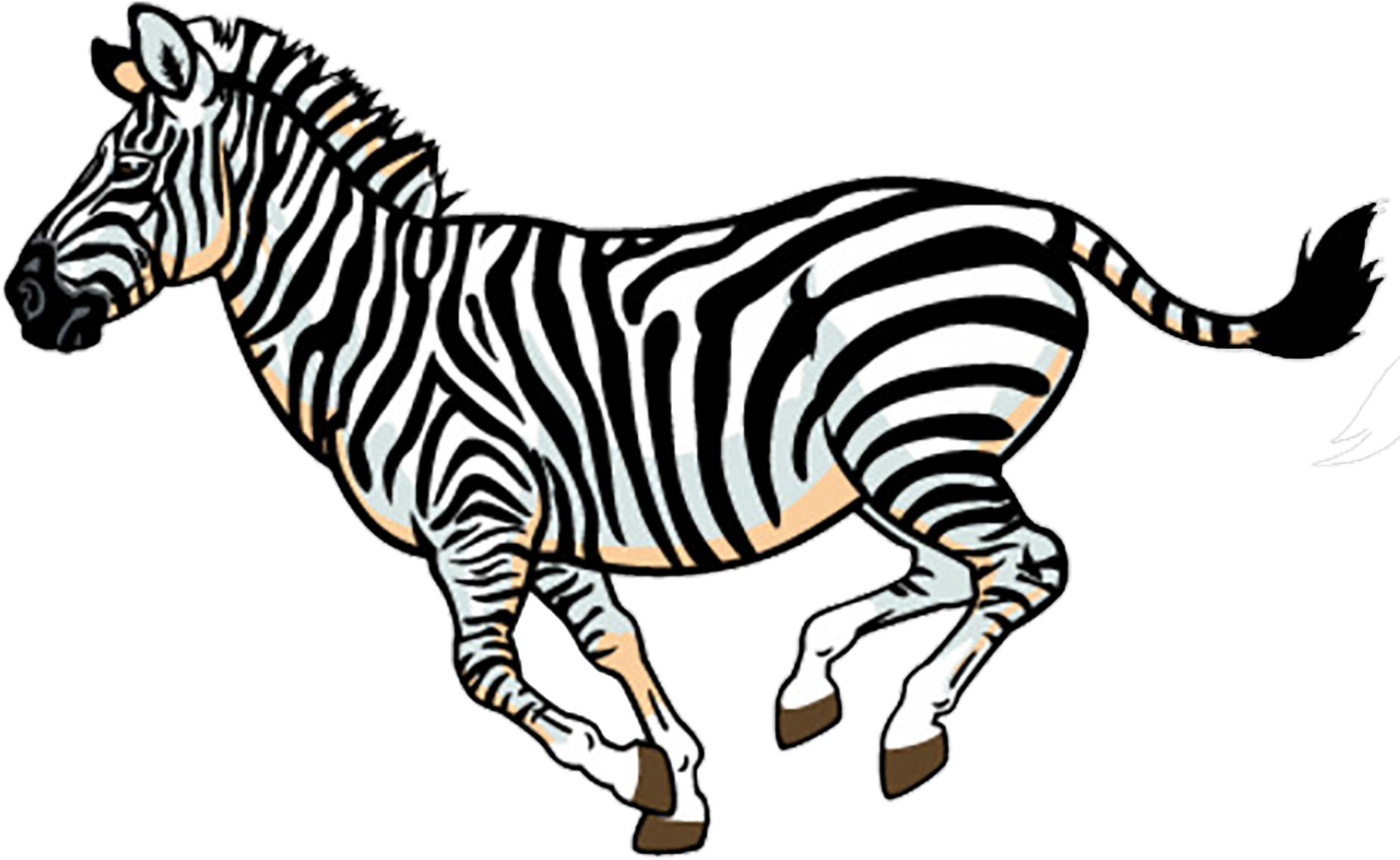 Colors Clipart Zebra.