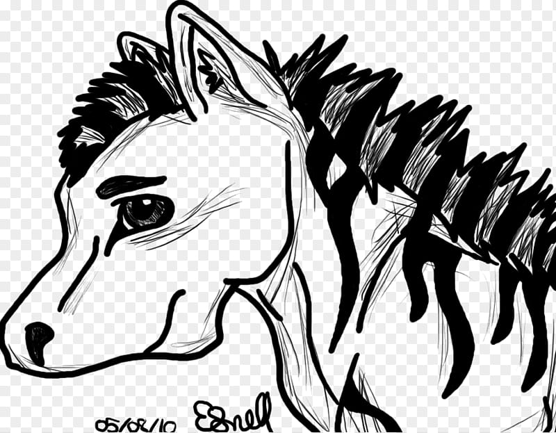 Zebra Outline, black horse illustration transparent.