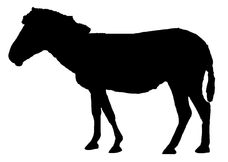 Zebra Silhouette Cliparts.