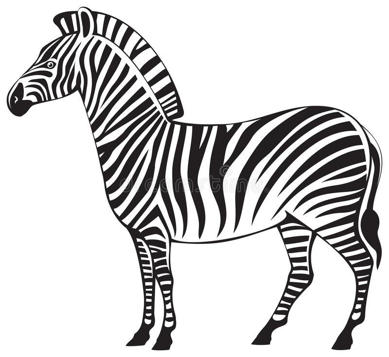 Zebra Silhouette Stock Illustrations.