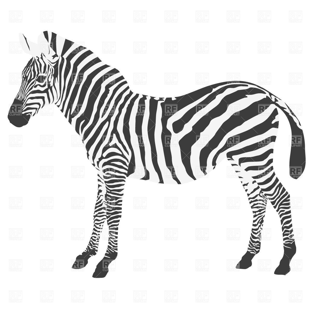 Zebra silhouette Stock Vector Image.