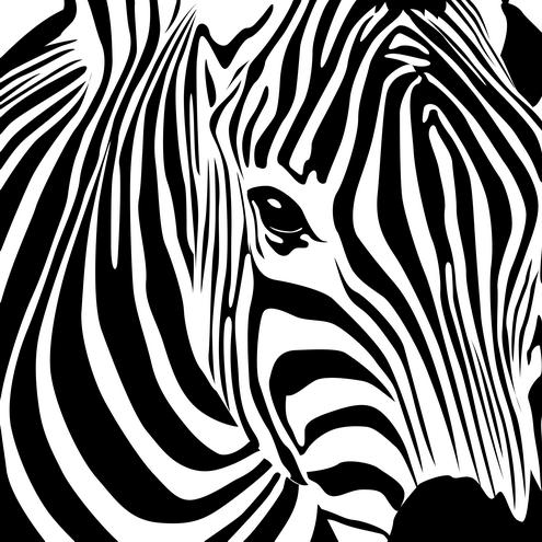 Zebra stripe clipart.