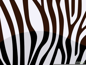 Zebra Stripes Pattern Clipart.