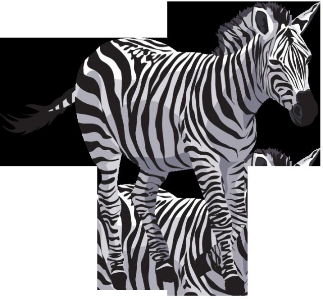 Clipart images zebra, Clipart images zebra Transparent FREE.