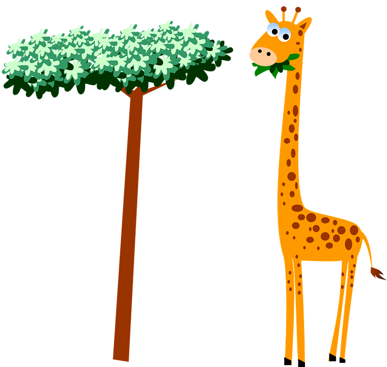 Free photo Wildlife Giraffe Cartoon Safari Neck Animal.