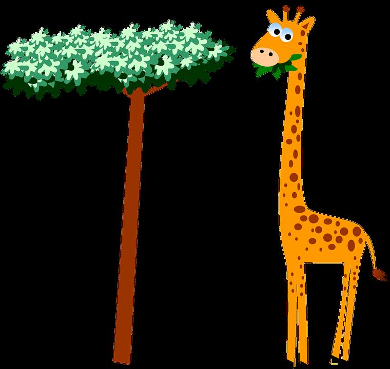 Free photo Wildlife Giraffe Cartoon Safari Neck Animal.