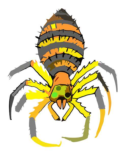 Free vector graphic: Spider, Body, Legs, Top, Antennas.