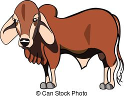 Brahman Illustrations and Clip Art. 41 Brahman royalty free.