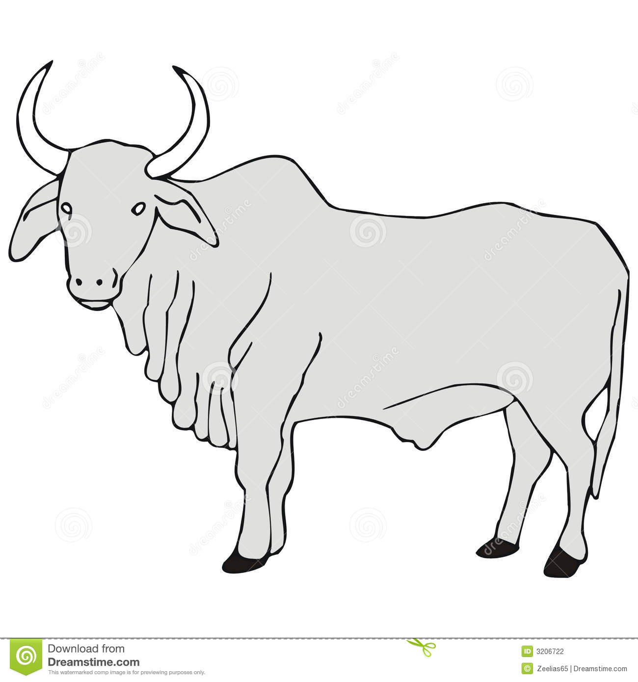Miniature Zebu Stock Illustrations.
