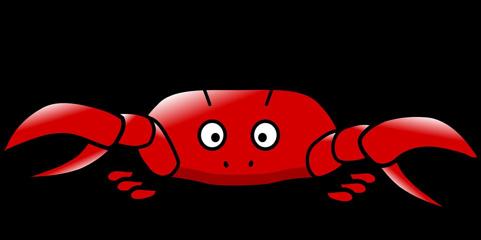 Crab, Animals.