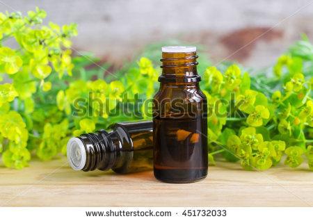 kazmulka's Portfolio on Shutterstock.