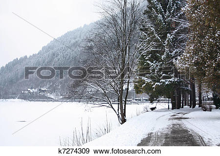 Stock Photograph of Scenic view of path around lake, Zeller See.