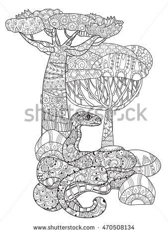 Anaconda Stock Photos, Royalty.