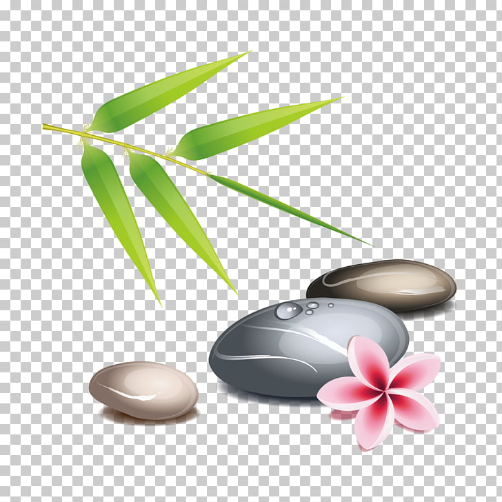 Zen , stones and leaves PNG clipart.