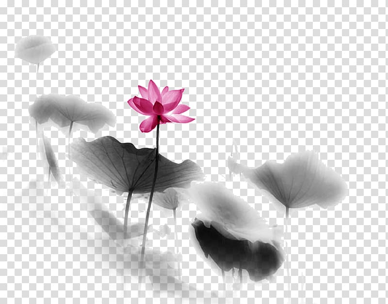 Buddhism Zen Meditation Happiness Buddhahood, Lotus.