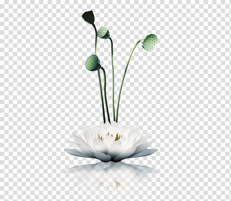 Zen Poster Chinoiserie Shan shui Buddhist meditation, lotus.