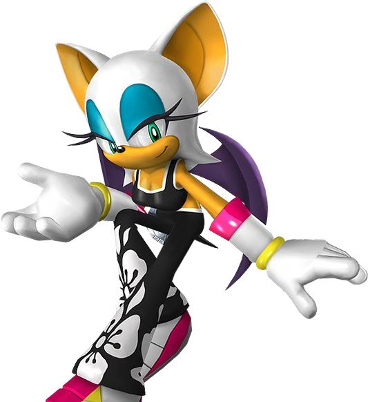 1000+ ideas about Sonic Riders Zero Gravity on Pinterest.