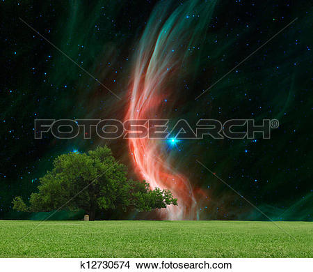 Drawings of A large Oak tree with the giant star Zeta Ophiuchi in.