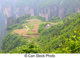Stock Photographs of China national forest park.