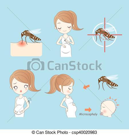 Vector of zika virus and pregnant women and baby csp40020983.
