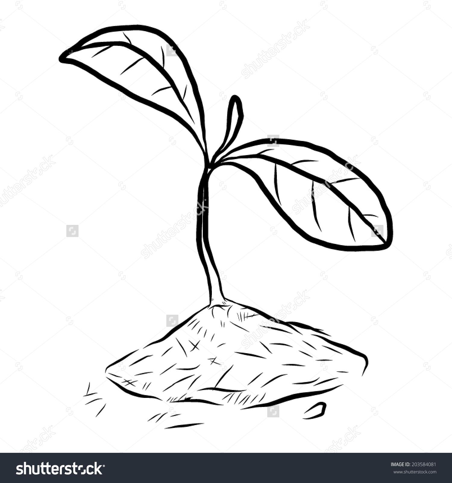 Cute zilla plant clipart black and white.