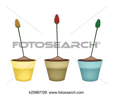 Clip Art of Zingiber Zerumbet Plants in Ceramic Flower Pots.