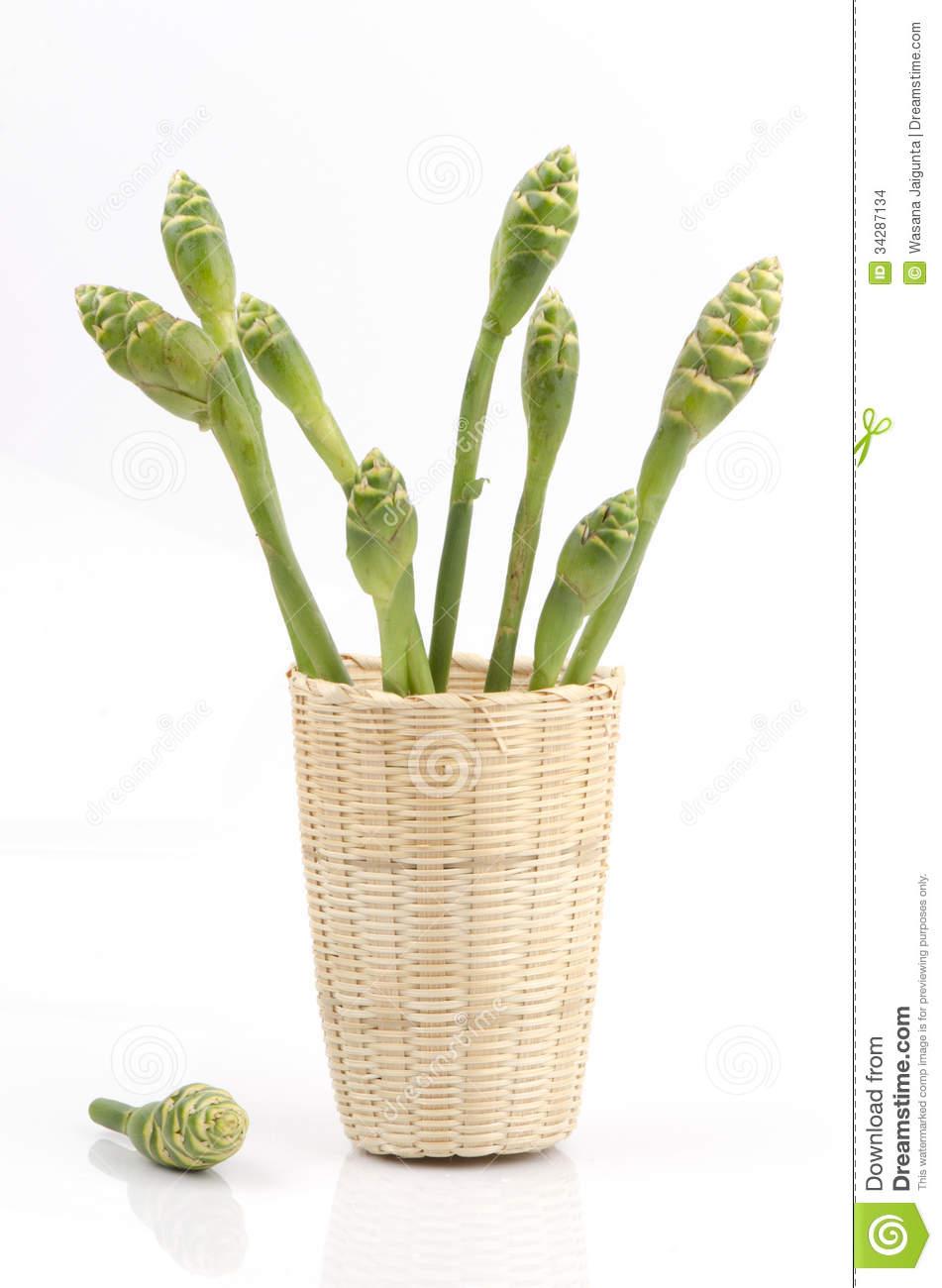 Flower Of Ginger (Zingiber Officinale Roscoe). Stock Images.