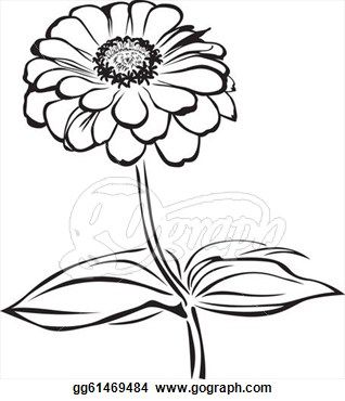 Zinnia clipart black and white.