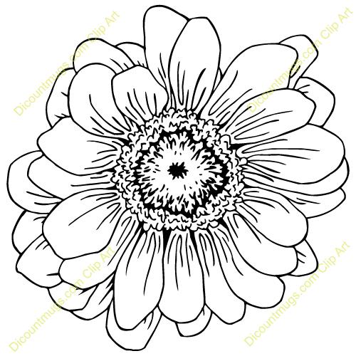 Free Zinnia Flower Clipart.