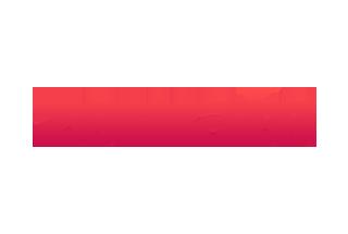 Zomato Logo Anything.