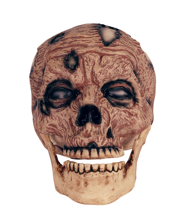 Zombie Head Png, png collections at sccpre.cat.
