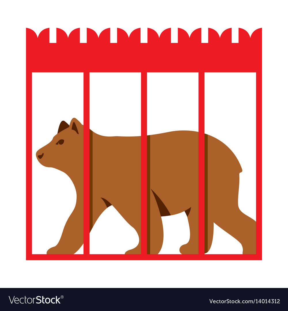 Bear in zoo cage flat style colorful.