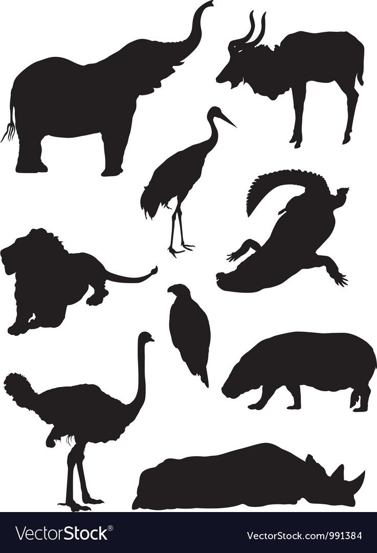 Zoo animals silhouette.
