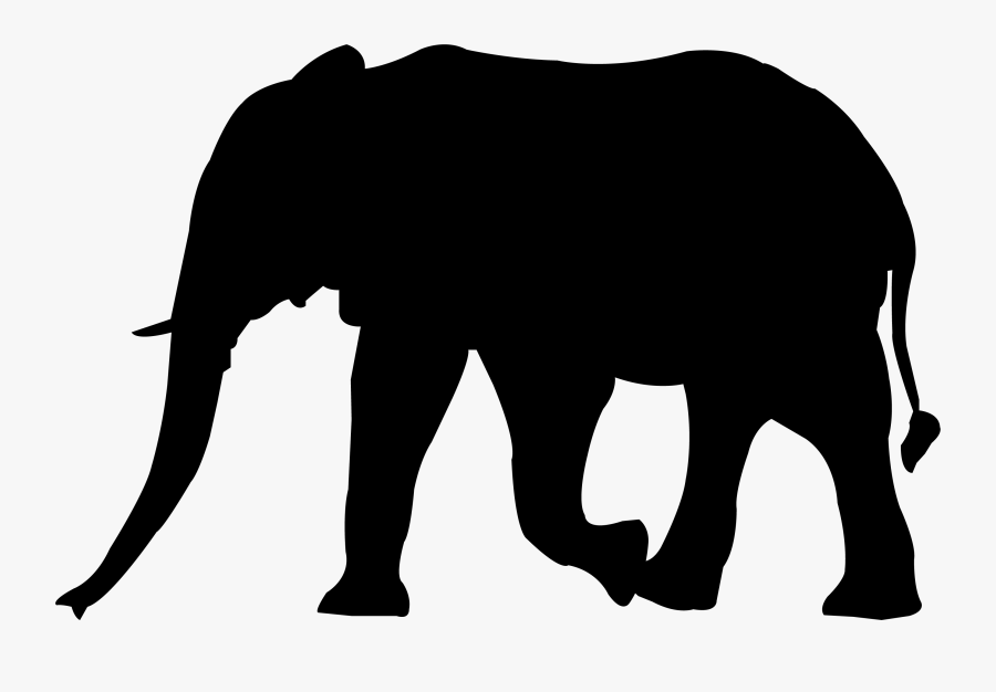 Transparent Elephant Trunk Png.