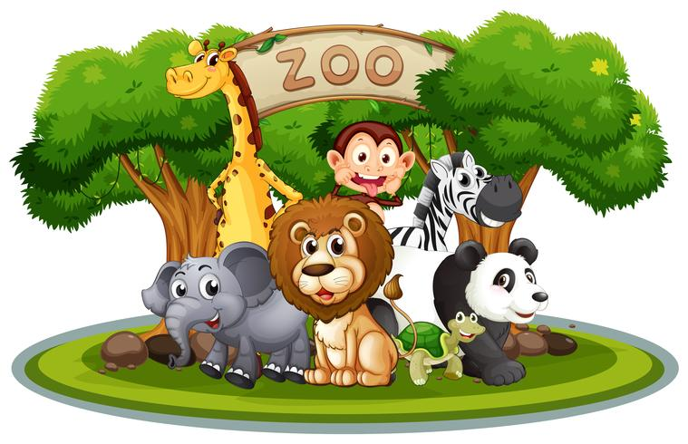 Cute animals in the zoo.