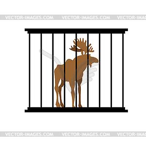 Deer in cage. Animal in Zoo behind bars. Elk with.