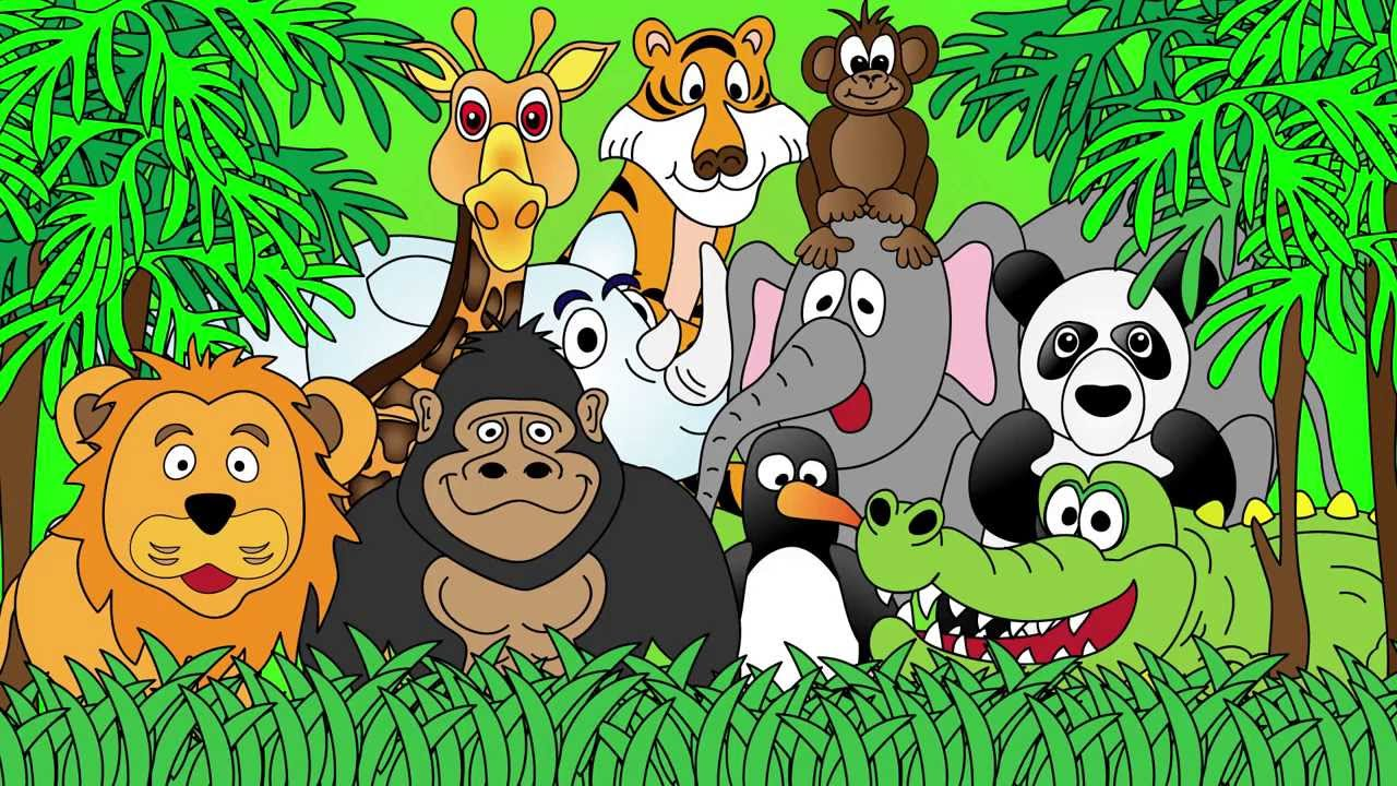 Zoo Animals Com 2019.