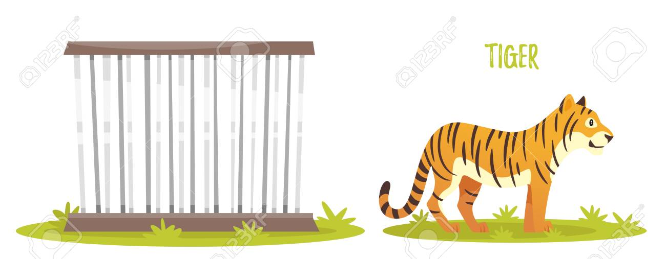 Vector cartoon style illustration of tiger. Zoo cage. isolated...