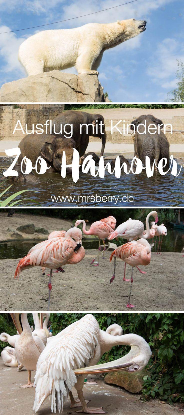 winter zoo hannover meyers hof