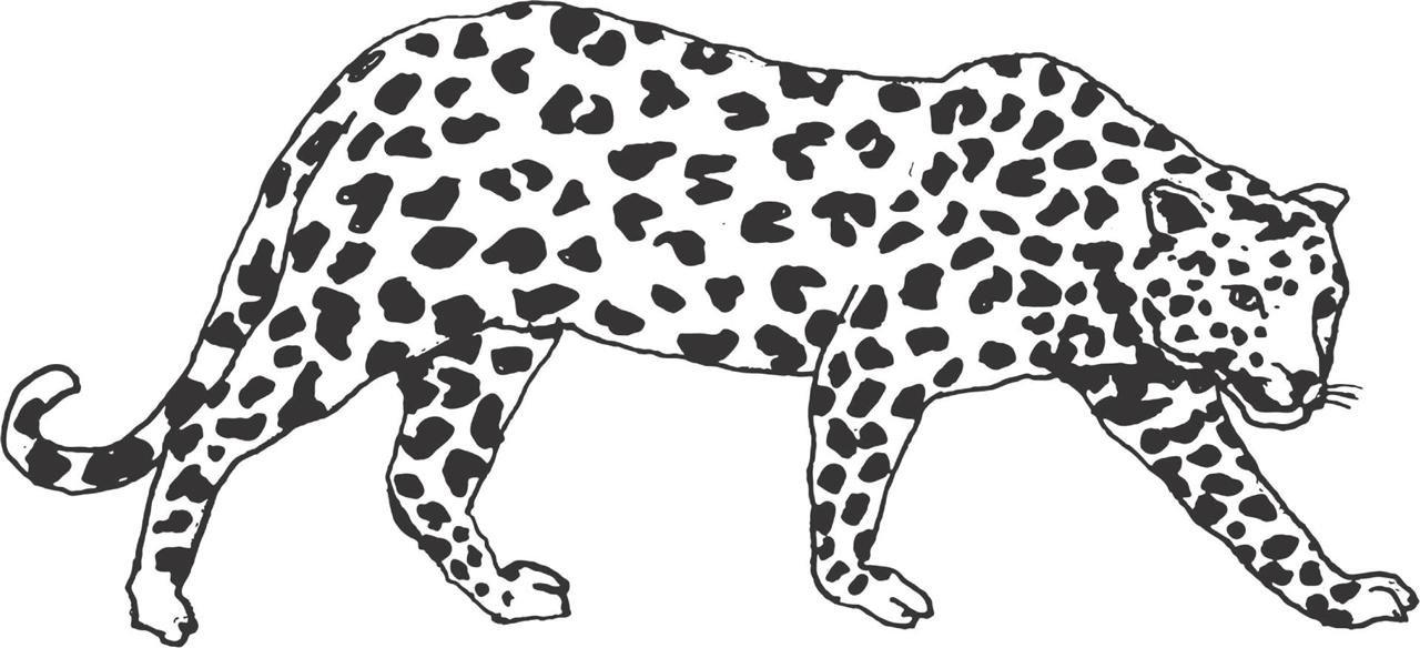 Decals & Stickers : Leopard Panther Jaguar Cougar Cat Animal.
