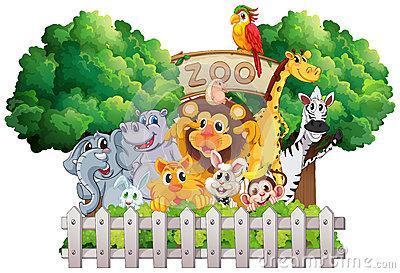 Zoo Scene Royalty Free Stock Photo.