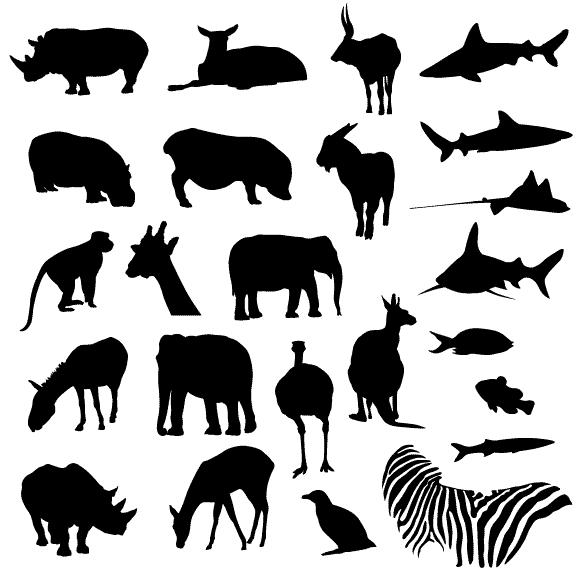 free vectors graphics.