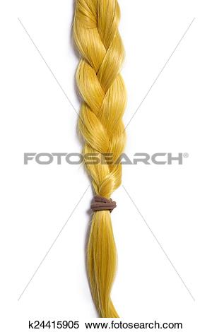 Stock Image of Golden blond hair braided in pigtail k24415905.