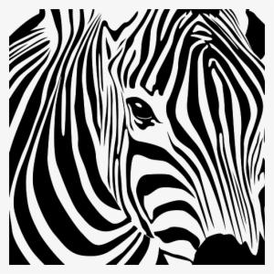 Zebra PNG, Transparent Zebra PNG Image Free Download , Page.