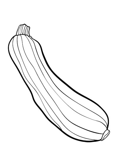 Zucchini clipart, Zucchini Transparent FREE for download on.