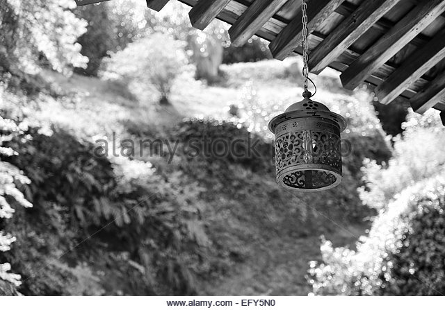 Hanging Plants Black and White Stock Photos & Images.