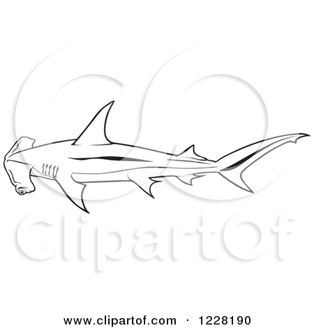 Clipart of a Black and White Smooth Hammerhead Shark.