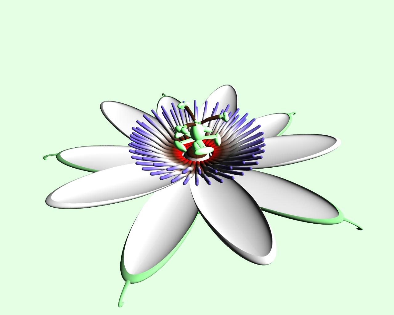 Flower Biology.